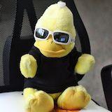 BigB, der gelbe Erpel aus Beckum, startet in die kreative Winterpause.