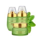 Die neue Grün-Gold MULTI BLOOM® Kosmetik Kollektion