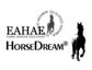 Internationale Pferdecoachs und Trainer treffen sich in Ungarn