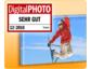 printeria ist Testsieger beim großen Foto-Leinwand Test von DigitalPHOTO