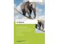 In Balance: CD-Trainingskonzept für flexible Inhouse-Schulungen zur Work-Life-Balance