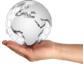 Insellösungen mit zentralem CRM reduzieren