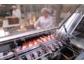 Geschäftsbericht 2009 der Riemser Arzneimittel AG veröffentlicht