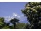 Südtiroler Verwöhnhotels: Golfen zwischen Palmen und Almen