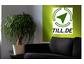 TILL.DE| Online Marketing Schulungen Oktober & November 2021
