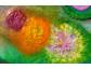 Lebensenergie und ganzheitliche Forschung: Lebensenergie Produkte zwischen esoterischen Lehren und der Quantenphysik