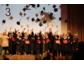Feierliche Verabschiedung von 155 Steinbeis Bachelor- und Masterstudenten