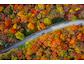 Baden-Württemberg ist die Top-Region für den Herbsturlaub in Deutschland