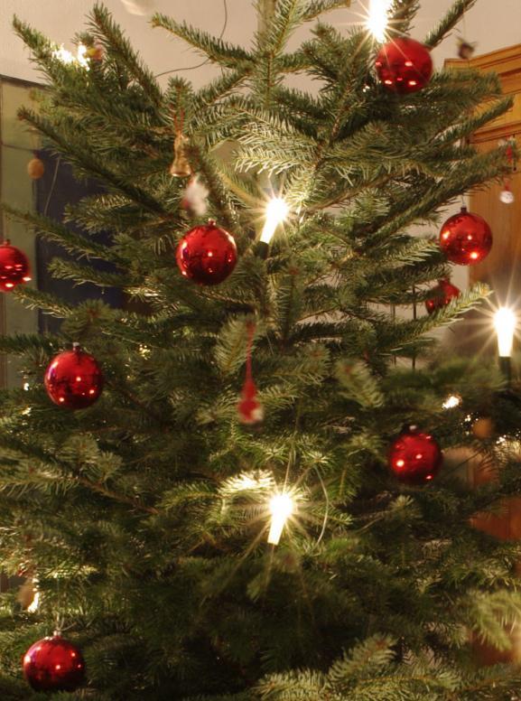 so bleibt der weihnachtsbaum lange frisch pressemeldung vom. Black Bedroom Furniture Sets. Home Design Ideas